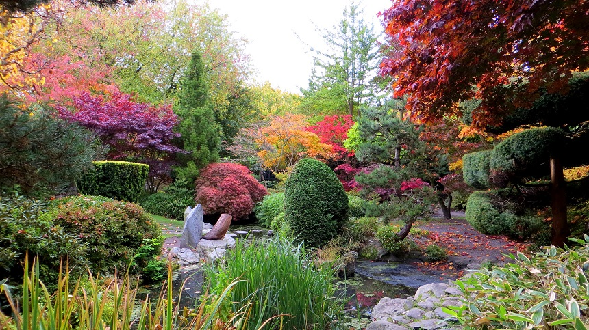 Japanese Gardens Calderstones - free things to do in Liverpool