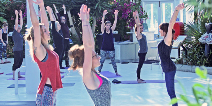 Palm House Yoga