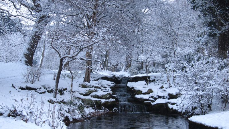 sefton park winter walks