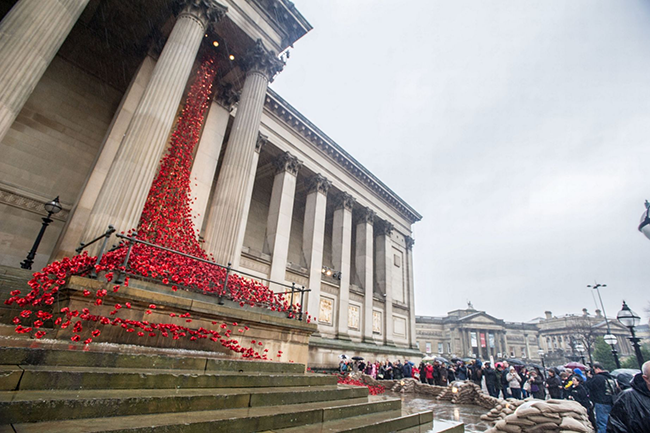 Poppies at St George's Hall